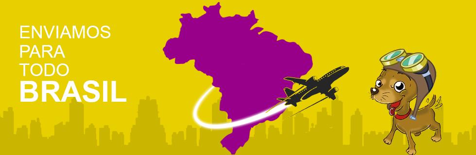 enviamos-para-todo-brasil